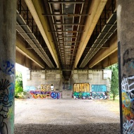 Donau Insel Brücke Graffiti