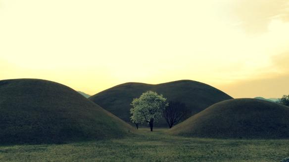 hills magnolia gyeongju
